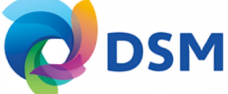 dsm-logo3 – keynote speaker client
